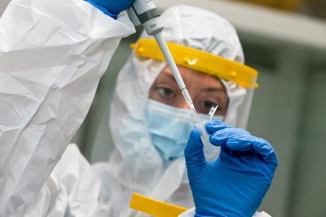Ostatniej doby wykonano 87,6 tys. testów na Sars-CoV-2.