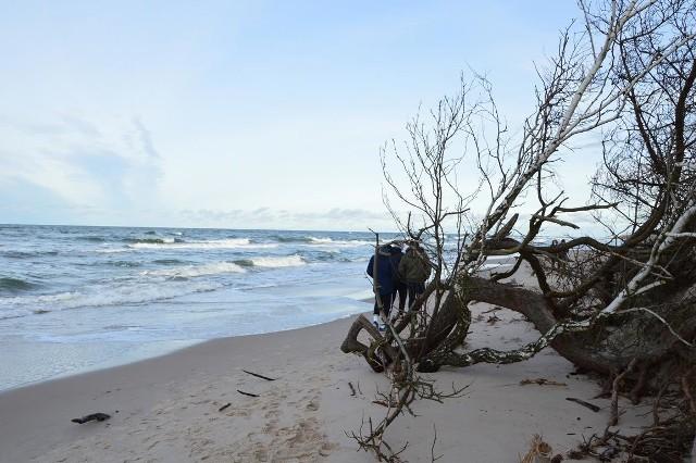 Plaża w Rowach zniszczona przez sztorm.