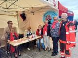VI edycja Festiwalu Organizacji Pozarządowych  w Sandomierzu. Zobacz czym pochwalili się społecznicy [ZDJĘCIA]