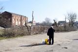 ZIELONA GÓRA. Wycinka drzew przy starej mleczarni na ul. Lisiej w Zielonej Górze [ZDJĘCIA]