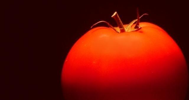 Marek Sawicki o CETA: Rynek zaleją produkty naszpikowane GMO- Napływ żywności zza oceanu doprowadzi do upadku wielu gospodarstw rolnych w naszym kraju. Osłabi też ochronę konsumentów przed GMO oraz szkodliwymi środkami chemicznymi masowo używanymi w produkcji żywności w Ameryce Północnej - tak zwrócili się do premier Beaty Szydło i ministra Krzysztofa Jurgiela aktywiści.