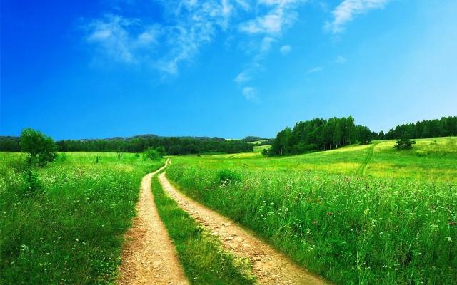 Oto aktualne oferty gruntów z województwa lubelskiego, które zostały wystawione na majowe licytacje komornicze. Przejdź do galerii i sprawdź