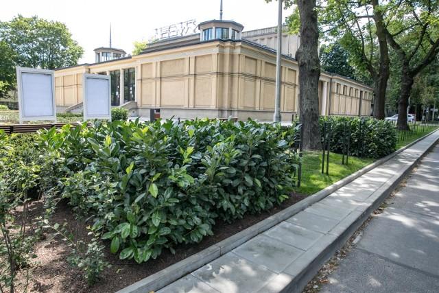 W Nowej Hucie powstaje kolejny krakowski park kieszonkowy