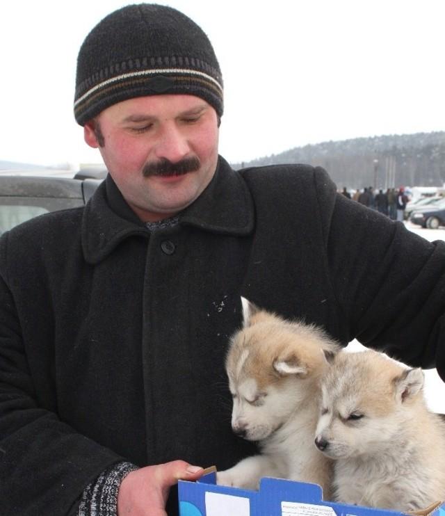 Pan Piotr przyjechał wczoraj na giełdę w Miedzianej Górze sprzedać szczeniaki rasy psów zaprzęgowych wykorzystywanych w ekspedycjach polarnych alaskan malamut.