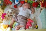 Toksyczne zabawki dla dzieci. Szkodliwe chemikalia zawiera co czwarta zabawka! Nowy raport ekspertów