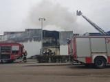 Pożar hali firmy Iglotex w Skórczu 27.05.2019. Gigantyczny ogień strawił niemal cały zakład pracy. Czy produkcja zostanie wznowiona?