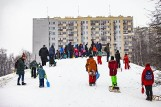 Kraków. Część mieszkańców nie chce psiego wybiegu na najlepszej górce do zimowego szaleństwa. Przygotowali w tej sprawie petycję