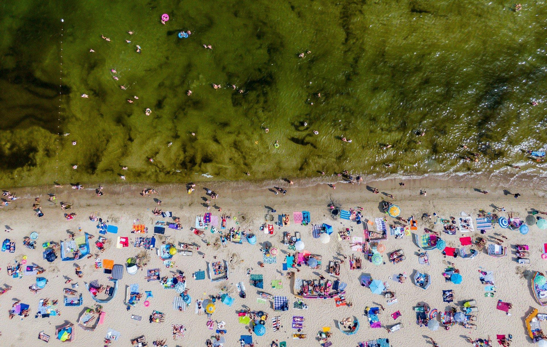 Sinice w Bałtyku 2020. Zamknięte kąpieliska nad morzem i jeziorami. 8.08.2020 r. To pokrzyżowało plany turystom | Polska Times