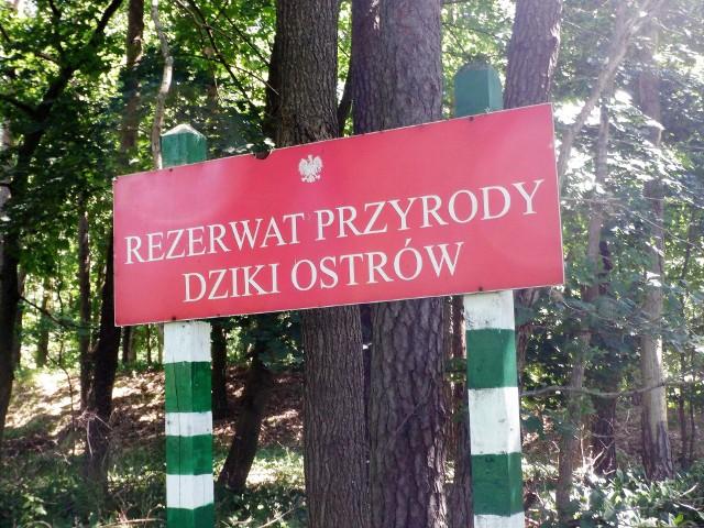 Dziki Ostrów to rezerwat przyrody. Utworzono go w roku 1977 na ponad 74 hektarach