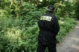 Akcja poszukiwawcza mężczyzny, który zaginął w lesie między Sopotem i Gdynią. 45-latek odnaleziony