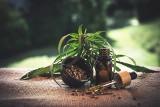 Nowe ostrzeżenie GIS dla klientów. THC w olejkach - substancja odurzająca może być groźna dla zdrowia!