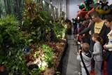 Największa na świecie wystawa roślin owadożernych w hali Expo-Łódź. Pod jednym dachem kilkaset gatunków roślin i kilka ciekawych zwierząt