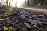 Białystok. Zwłoki 27-latki w Lesie Turczyńskim. Prokuratura umorzyła śledztwo