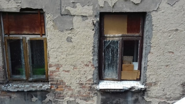 Mieszkańcy i strażnicy miejscy interweniowali w sprawie ptaków uwięzionych w pustym mieszkaniu przy ul. Niecałej 10 w Lublinie