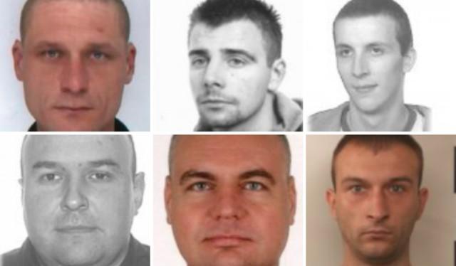 Policjanci z Małopolski osób, które prowadziły samochód po alkoholu lub narkotykach. Wśród poszukiwanych jest także kobieta Rozpoznajesz kogoś z fotografii? Zgłoś to na policję!Przesuwaj zdjęcia w prawo - naciśnij strzałkę lub przycisk NASTĘPNE >>>