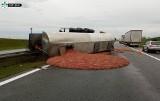 Mięso rozlało się po autostradzie! Wypadek na A2. Przewróciła się cysterna z pokarmem dla zwierząt - zobacz zdjęcia