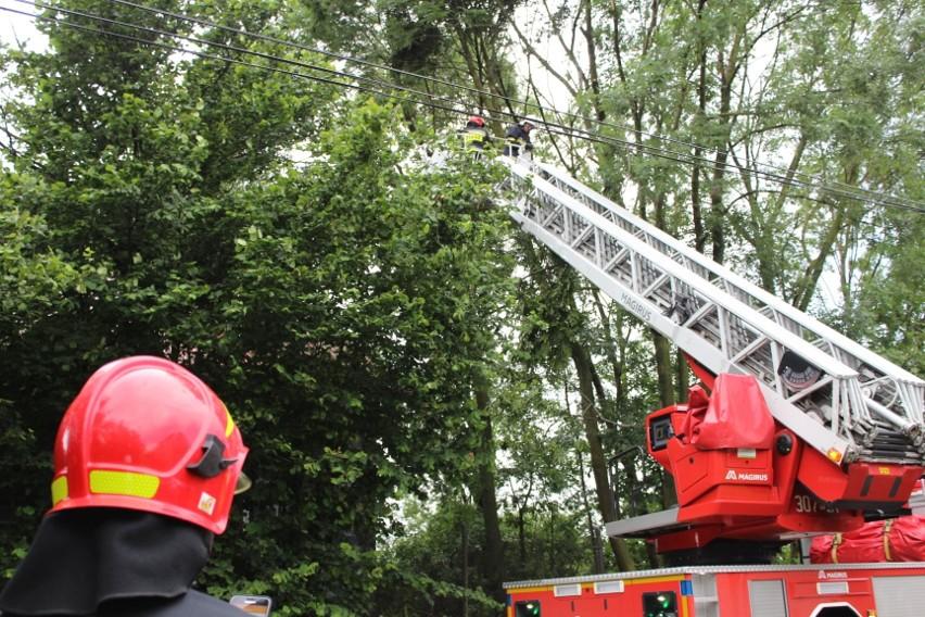 Strażacy z OSP Wielmoża służą podczas pożarów, podtopień,...