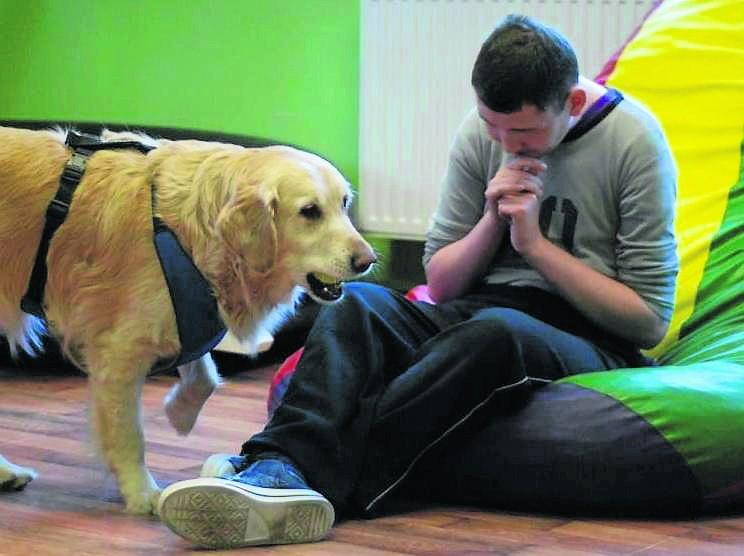 """Poznański """"Kamyk"""" pomaga dorosłym niepełnosprawnym. Każdego dnia 20 podopiecznych spędza w ośrodku 6 godzin"""