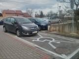 Przeszkoda dla niepełnosprawnych [Mistrzowie parkowania]