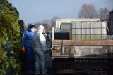 Kolejny groźny wirus nadciąga do Polski. Przynoszą go ptaki przylatujące z Rosji