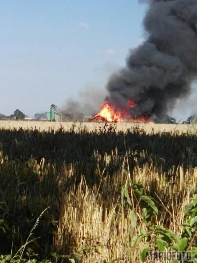 Pożar tartaku w Szybowicach.