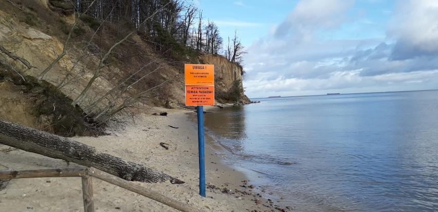 Na klifie w Gdyni Orłowie możliwe są kolejne osuwiska. Spacerowicze, którzy lekceważą tablice ostrzegawcze, wchodzą tam na własne ryzyko
