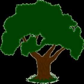 Cennym źródłem porad na temat tworzenia drzewa genealogicznego może być oprócz rodziny również Internet