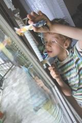 """Michał cierpi na dziecięce porażenie mózgowe. Dzięki delfinoterapii ma szansę nareszcie powiedzieć """"mama"""" (wideo)"""