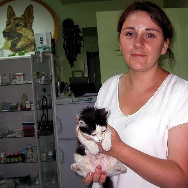 - To nieszkodliwy zabieg dla kota, a ułatwia współżycie między kotami i ludźmi - mówi Beata Pawliszyn.