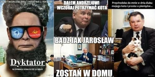 Najlepsze MEMY o Jarosławie Kaczyńskim. Jedni go kochają, inni nienawidzą [GALERIA]