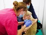 Szczepienia przeciw COVID-19 przyspieszają. Do końca kwietnia zaszczepieni mają zostać wszyscy chętni 60+