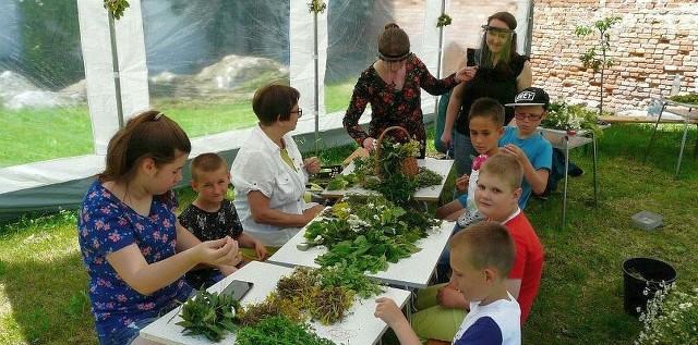 W najbliższy czwartek w inowrocławskim muzeum zapachnie ziołami