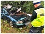 Śmiertelny wypadek w Rusocinie 31.08.2020. Samochód uderzył w drzewo. Nie żyje mężczyzna