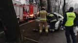 Wypadek w Kcyni. Samochód uderzył w drzewo. Jedna osoba trafiła do szpitala