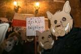 """Dziki protest w obronie dzików w Krakowie. """"Dzik czuje, tak jak kot prezesa"""", """"Strzel se w łeb"""" [ZDJĘCIA]"""
