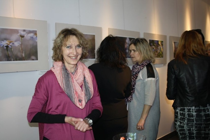 Jolanta Orzłowska została w 2011 roku przyjęta do Związku Polskich Fotografów Przyrody. Fotografia to jej wielka pasja od momentu komunii, gdy dostała pierwszy aparat fotograficzny, z zawodu jest nauczycielką