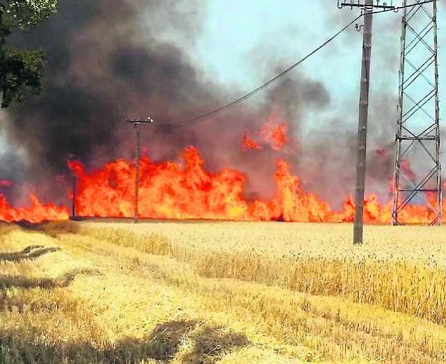 Żniwa w upałach sprzyjają pożarom Ponad 18 hektarów zboża spaliło się ostatnio w Kuklinowie
