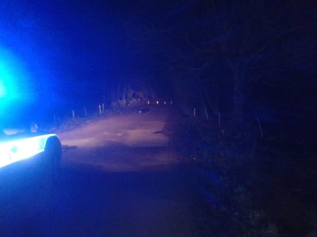 Śmiertelny wypadek na drodze Milewskie - Krasne Folwarczne. Nie żyje pieszy