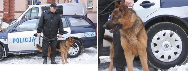 Grej wraz ze swoimi partnerem st. sierż. Grzegorzem Brzozowskim z chełmińskiej komendy policji