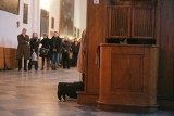 Spowiedź wielkanocna - Poznań 2021: Gdzie się wyspowiadać przed Wielkanocą? Kościoły w Poznaniu (franciszkanie, dominikanie, fara, katedra)