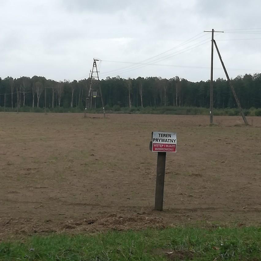 Tak wygląda teren budowy fermy kurzej w Kacprowie.
