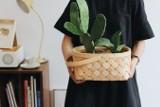 Domowa dżungla. Jak modnie zaaranżować rośliny w mieszkaniu? Pomysły na stylowe i proste dekoracje z kwiatami i roślinami w roli głównej