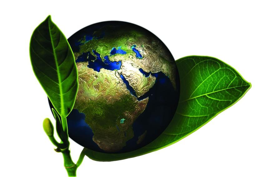 Poświęć w sobotę godzinę dla naszej Ziemi!