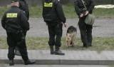23-latka z Tomaszowa odnaleziona. Kobieta żyje