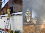 Dwugodzinna akcja gaśnicza w Typinie. Drewniany budynek mieszkalny zaczął się palić
