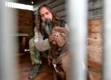Psy, które w Przemyślu zagryzły 12-letniego chłopca czekają na wyrok w schronisku. Zbliżyć siędo nich może tylko Przemysław Grządziel