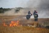 Pożar łąki w Sroczewie spowodowali biesiadnicy, którzy urządzili sobie grilla z kiełbaskami