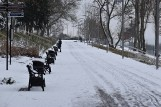 Zima w pełni w Krośnie Odrzańskim. Tak prezentuje się niedawno odnowiony Park Tysiąclecia i promenada w śniegu