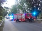 Wypadek w Chłapowie (27.06.2019). Młody turysta dachował niedaleko Wąwozu Rudnik. Samochód spadł ze skarpy [zdjęcia]