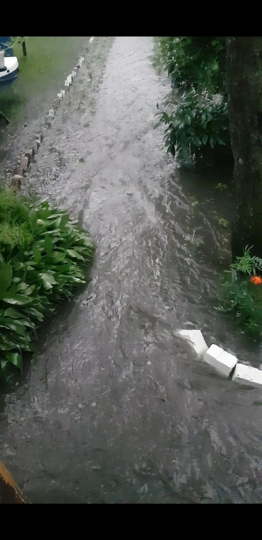 Tak wyglądają skutki intensywnych deszczy na ogródku...